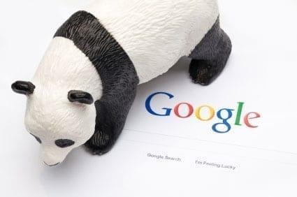 Bilden visar Googles logotyp med en panda brevid.